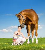 Chestnut horse, dog and girl