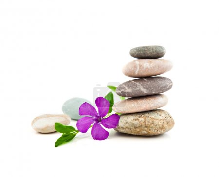 Photo for The balanced stones and gentle flower on a white background - Royalty Free Image