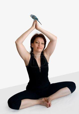 Photo pour La femme est engagée dans le yoga facilement et facilement, et le perroquet ondulé essaie de l'imiter . - image libre de droit