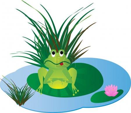 Frog on the lake