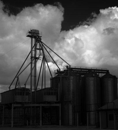 Grain Silos 5