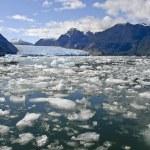 Icebergs from the San Rafael Glacier in Patagonia,...