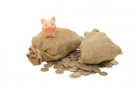 Photo for Toy pig with bags of money isolated - Royalty Free Image