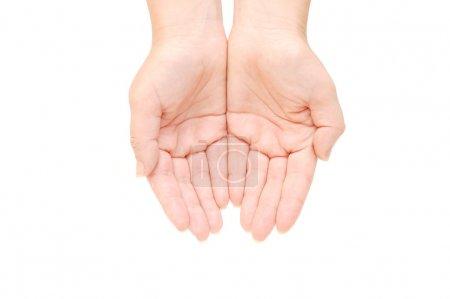 Photo pour Femme vide mains isolées sur fond blanc - image libre de droit