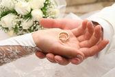 anneaux sur un palm