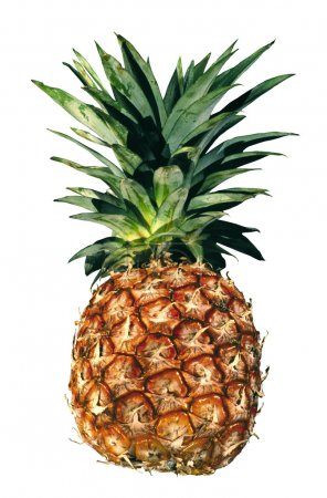 Photo for The cut rings of pineapple - Royalty Free Image