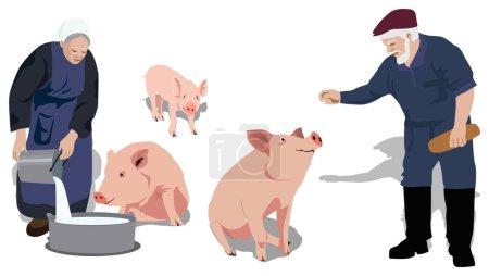 Pigs_people_farm