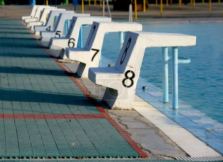 Photo for Swimming pool with starting blocks - Royalty Free Image