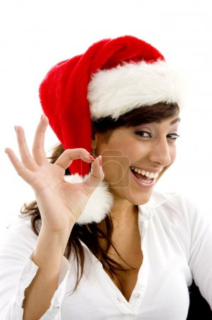 Cheerful female wearing christmas hat
