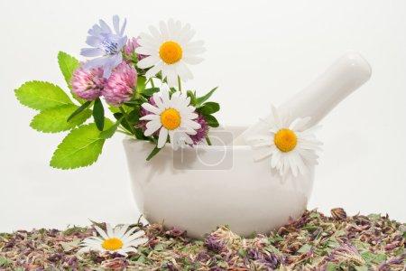 Photo pour Médecine à base de plantes (herbes médicinales, mortier et pilon) ) - image libre de droit