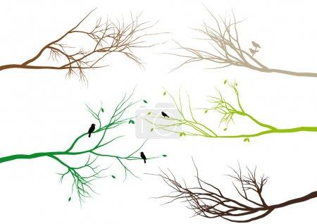 Illustration pour Branches d'arbres avec des oiseaux et des feuilles, fond vectoriel - image libre de droit