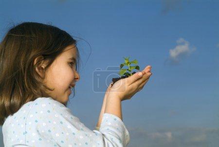 Photo pour Smilling enfants mains tenant plante contre ciel bleu clair - image libre de droit