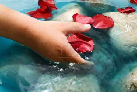 Child hand water and petals