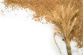 Fascio di grano e cereali, telaio