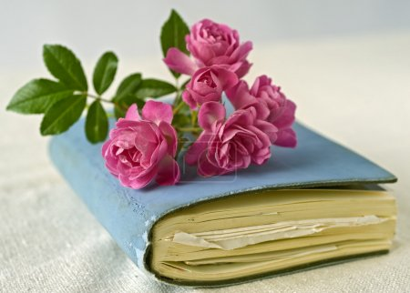 Photo for Bouqet of small roses on a diary, sketchbook - Royalty Free Image