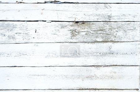 Photo pour Grungy floconneux fond de peinture blanche sur une clôture en bois . - image libre de droit