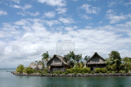 Two huts made from palms in Belize