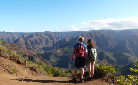 Tourists overlooking Waimea Canyon.