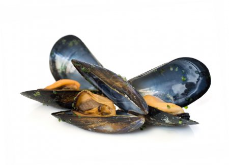 Three mussels