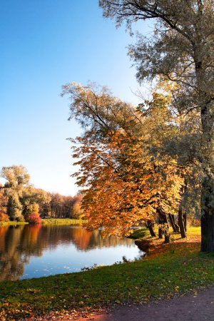 Photo for Autumn landscape of lake and bright trees - Royalty Free Image