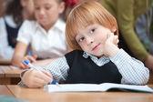Cute schoolboy in classroom