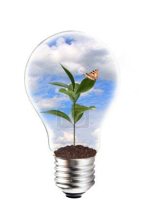 Photo pour Concept d'énergie verte - image libre de droit