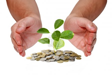 Photo for Invest money concept - Royalty Free Image
