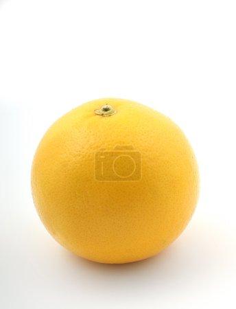 Foto de Cerca de un pomelo fresco amarillo sobre fondo blanco - Imagen libre de derechos