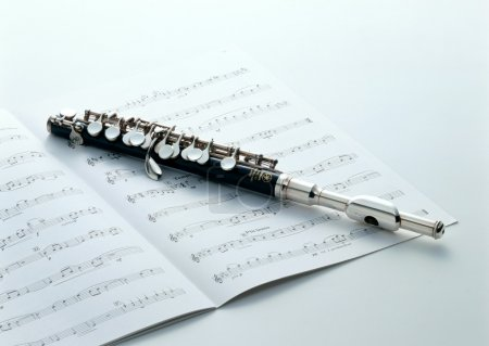 Photo pour Instruments de musique et performance - image libre de droit