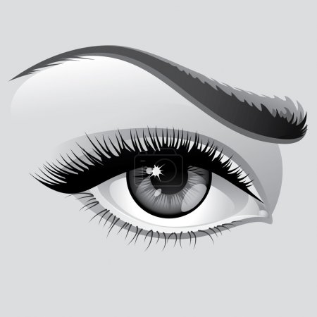 Illustration for Vector illustration detailed сloseup eye beautiful woman - Royalty Free Image