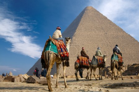 Bedouins on camel near of great pyramid in egypt...
