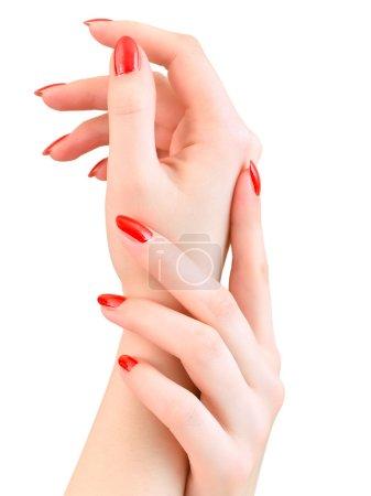 Photo pour Mains de femme avec clous rouges sur le fond blanc - image libre de droit
