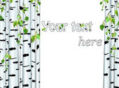 Illustration of the birch trunk frame with copyspace for your text on white