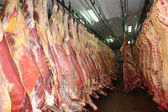 Beef Half Sides