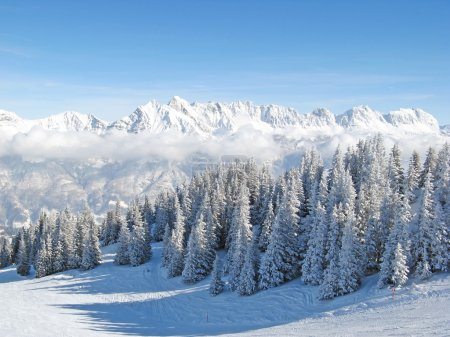 Winter in the alps