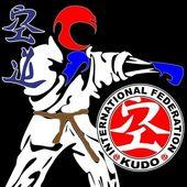 Fighting arts-KARATE