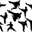 MARTIAL ARTS - SET VECTOR ISOLATED...