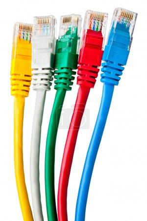 Five multi-colored patch cord