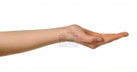 Photo for Female hand. Isolated on a white background - Royalty Free Image