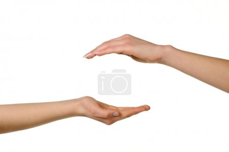 Two different female hands