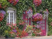 Dům s květinami, Bretaň, Francie
