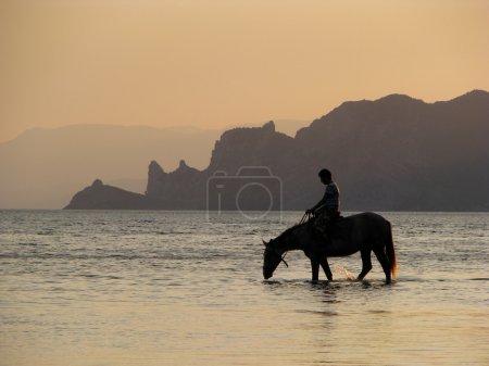 Photo pour Cavalier dans la mer. Hors boit le soir . - image libre de droit