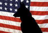 Německý ovčák silueta na americké vlajky