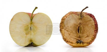 Two half of apple
