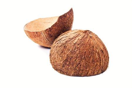 Dry coconut shells