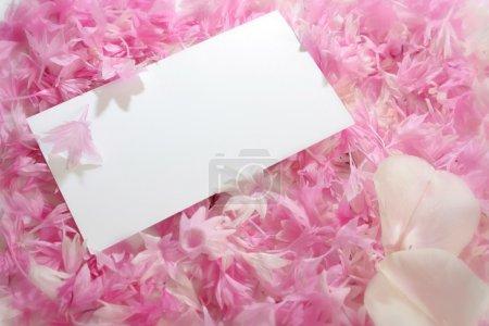 Petals invitation
