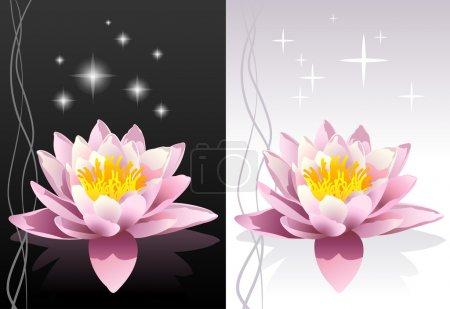 Vector detailed lotus flower