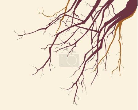 Illustration pour Arbre vecteur branches silhouette arrière-plan - image libre de droit