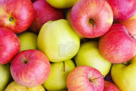 Photo for Background with red and green apples - Royalty Free Image