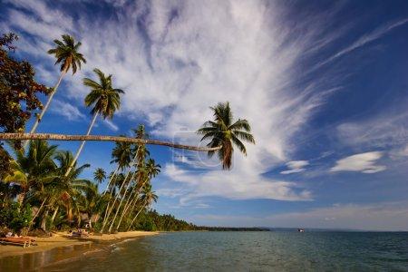 Photo for On the tropical beach. Siam bay. Province Trat. Koh Mak island. Kingdom Thailand - Royalty Free Image
